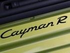 Cayman座椅